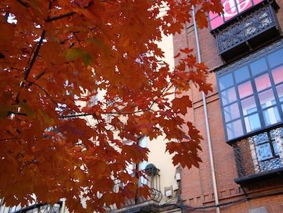 Un pedacito de otoño