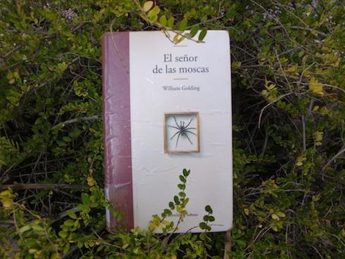 el-sencc83or-de-las-moscas